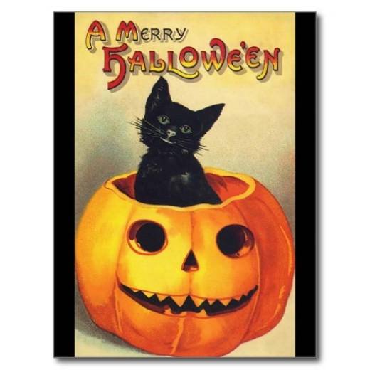 halloween_black_cat_in_pumpkin_vintage_art_postcard-r45727519c3b94804983524bfc75b45e2_vgbaq_8byvr_512